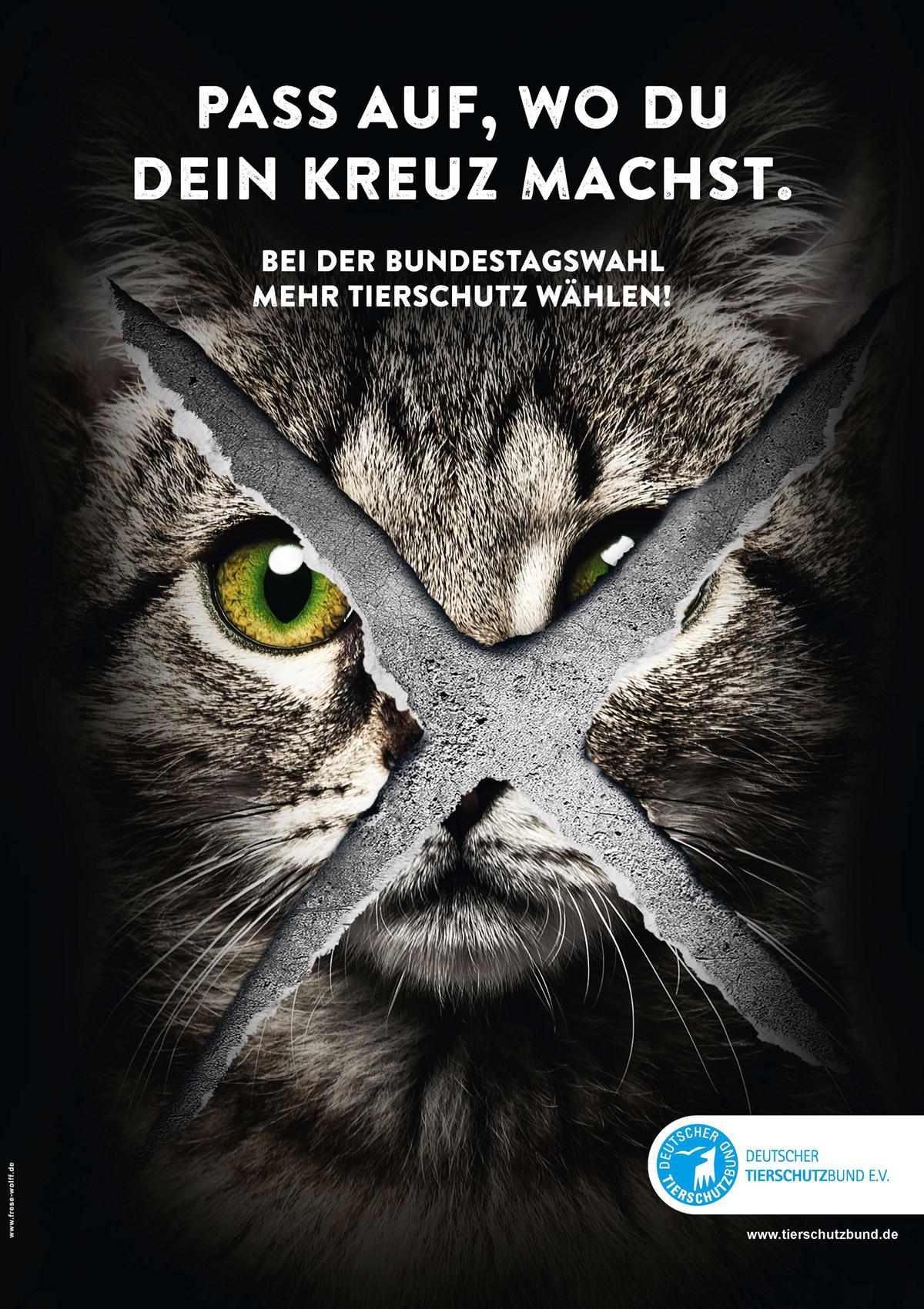 Mit Kampagnenplakaten macht der Deutsche Tierschutzbund Wählerinnen und Wähler darauf aufmerksam, dass sie mit ihrer Wahlentscheidung auch den Grundstein für den Tierschutz in den nächsten Jahren legen.