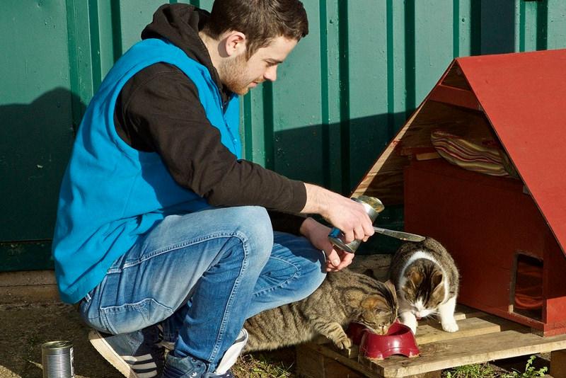 Tierschützer in Vereinen und Tierheimen brauchen Unterstützung seitens der Politik.